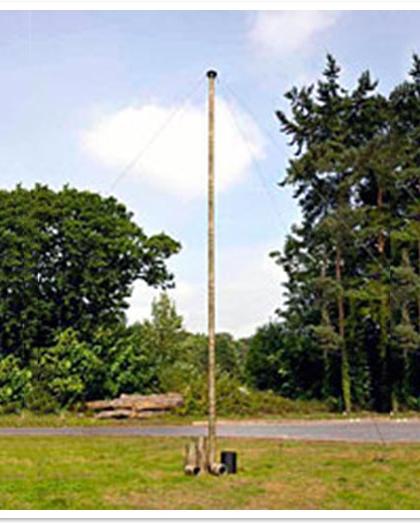 Mast Elevation System